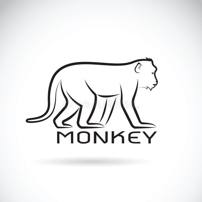 Vector van een aap op witte achtergrond vector illustratie