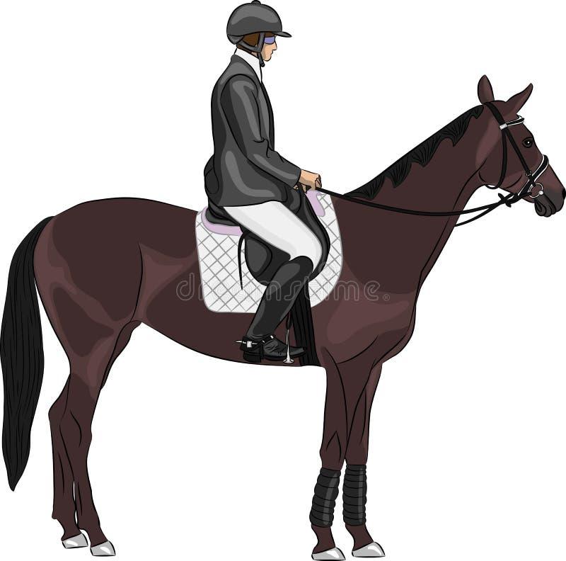 Vector van een jockey op een paard vector illustratie