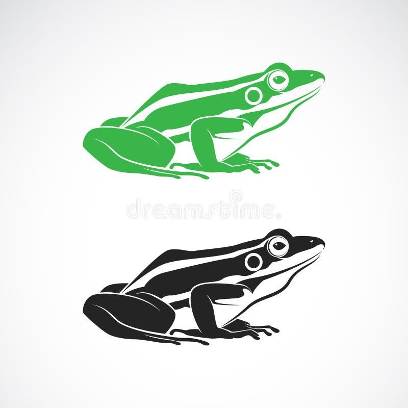 Vector van groene kikkers en zwarte kikker op witte achtergrond amfibie Dier Kikkerpictogram of embleem Gemakkelijke editable gel vector illustratie