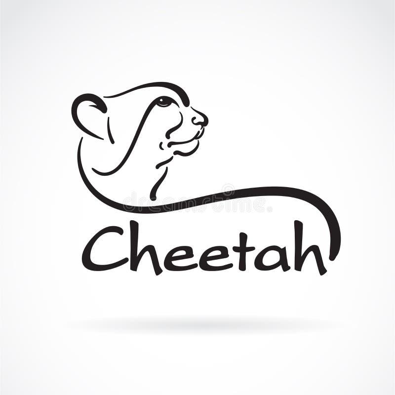 Vector van jachtluipaard uit de vrije hand het hoofd schilderen op witte achtergrond Wilde dieren Gemakkelijke editable gelaagde  vector illustratie