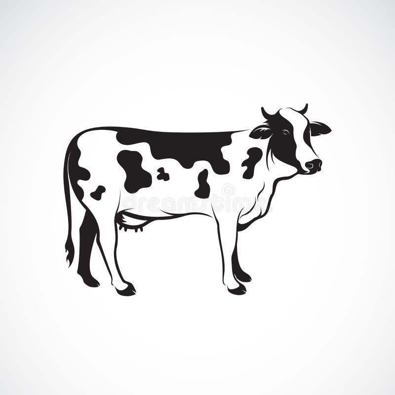 Vector van koe op witte achtergrond, Landbouwbedrijfdier, Vectorillustratie Koeembleem of pictogram Gemakkelijke editable gelaagd royalty-vrije illustratie