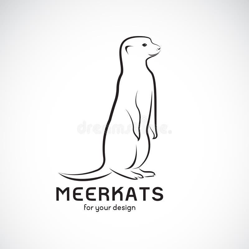 Vector van meerkatsontwerp op witte achtergrond Wilde dieren Meerkatsembleem of pictogram Gemakkelijke editable gelaagde vectoril vector illustratie