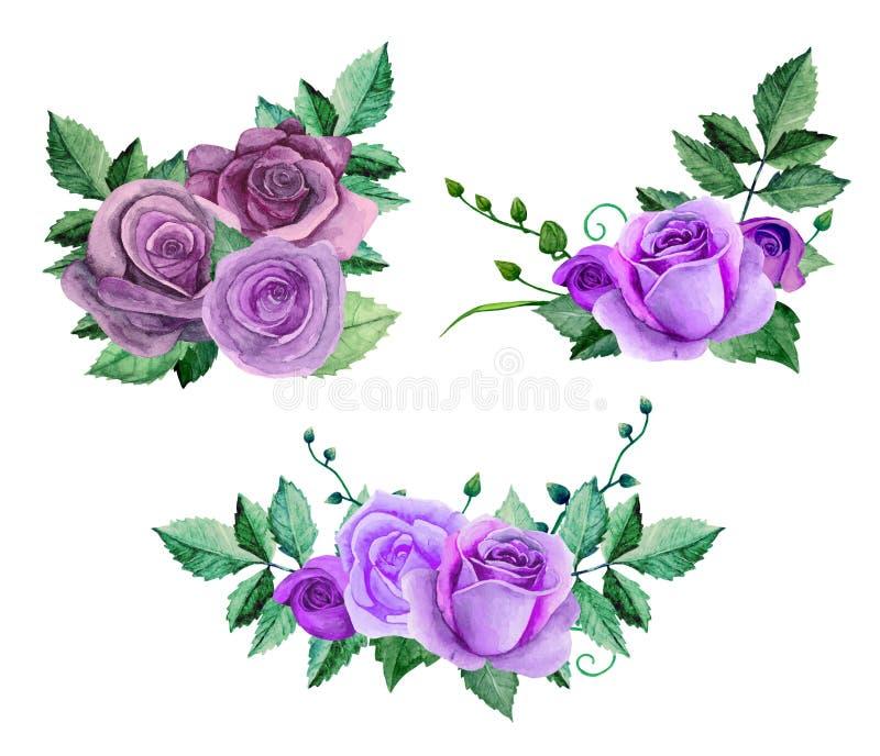Vector van waterverf de purpere rozen stock illustratie