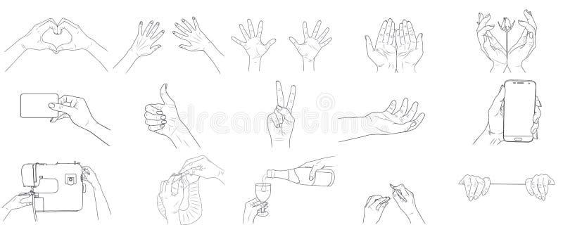 Vector vastgestelde schetsillustratie - de handen van vrouwen vector illustratie