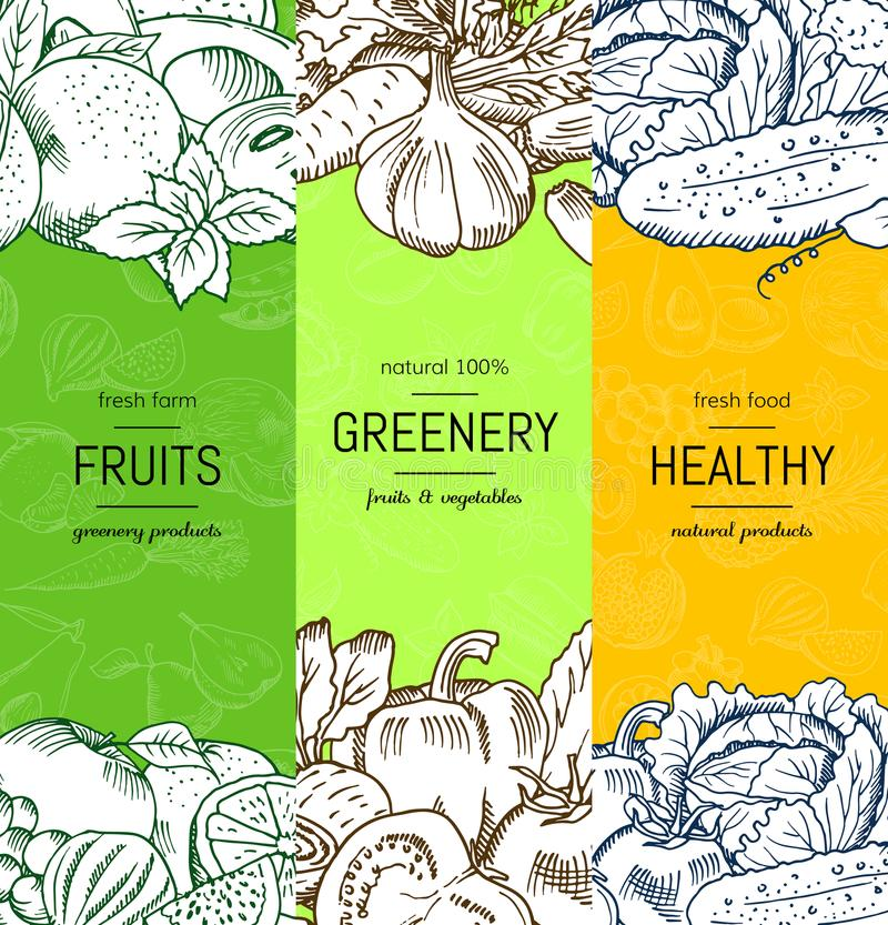 Vector vegan, healthy, organic banner set with doodle sketched fruits and vegetables royalty free illustration