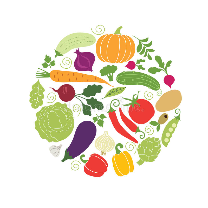 Vector vegetables illustrations stock illustration