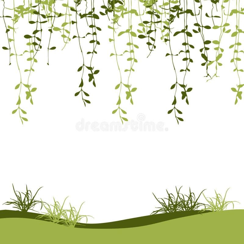 Vector verde de la hoja y de la hierba del escalador para el fondo de la primavera ilustración del vector
