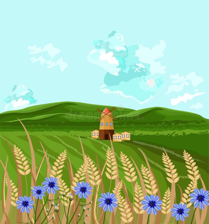 Vector verde de los campos Ejemplos de la decoración del fondo de la primavera stock de ilustración