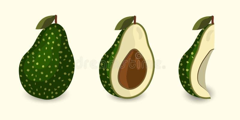 Vector verse avocado De stijl van het beeldverhaal stock illustratie