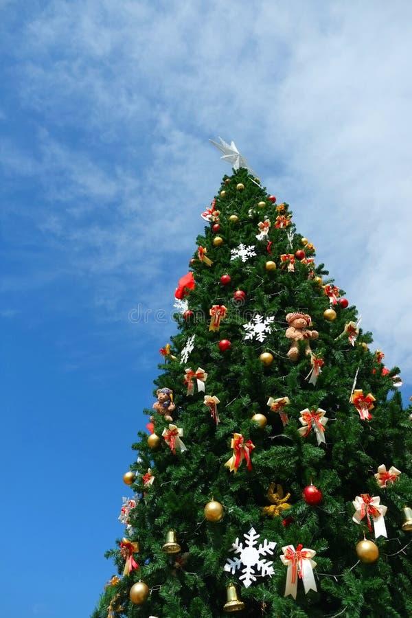 Download Vector Versie In Mijn Portefeuille Stock Afbeelding - Afbeelding bestaande uit gevoelig, kerstmis: 54076945