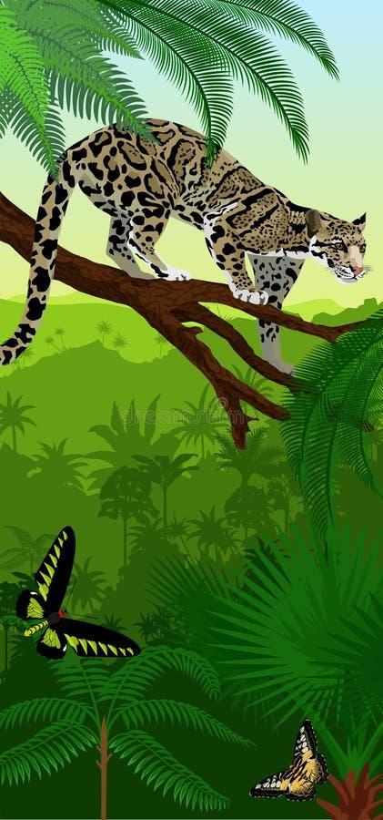 Vector verticale baner van het Wildernisregenwoud met betrokken nebulosa en trogonopterabirdwingsvlinders van luipaardneofelis stock illustratie