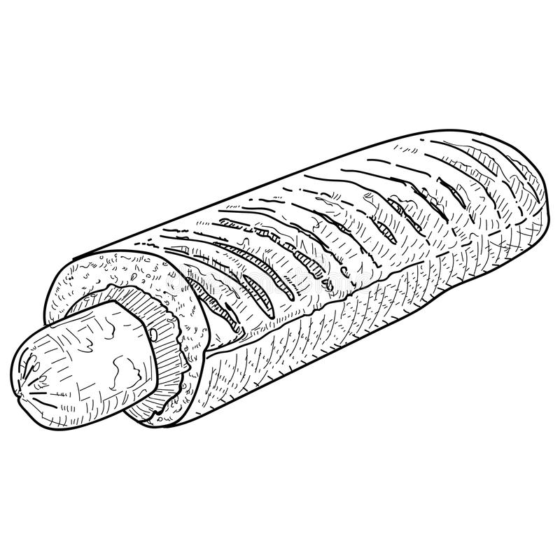 Vector vintage hot dog drawing. Hand drawn monochrome fast food illustration. royalty free illustration