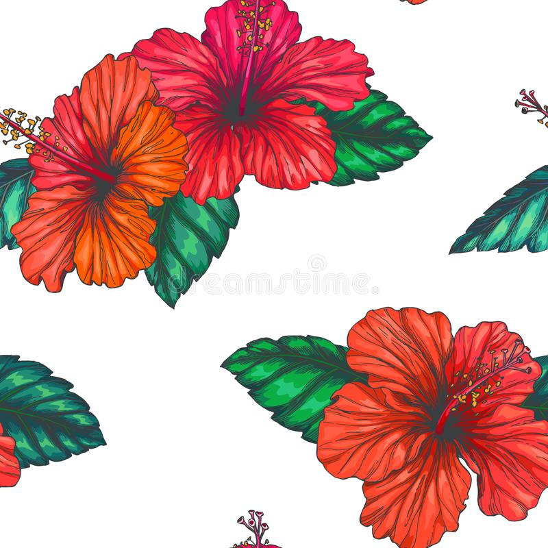 Vector vintage seamless pattern with red tropical flowers isolated on white. Hibiscus with leaves in engraving style. Hand drawn stock illustration