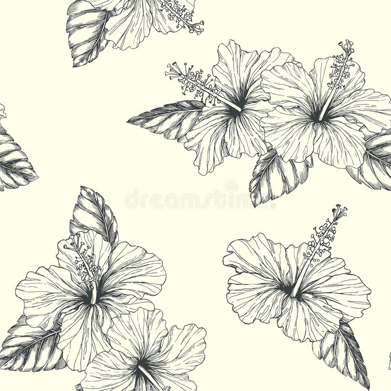 Vector vintage seamless pattern with tropical flowers isolated o royalty free illustration