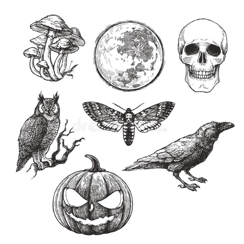 Vector vintage set of Halloween symbols in engraving style. Hand drawn illustration with skull, pumpkin, full moon, raven, death royalty free illustration