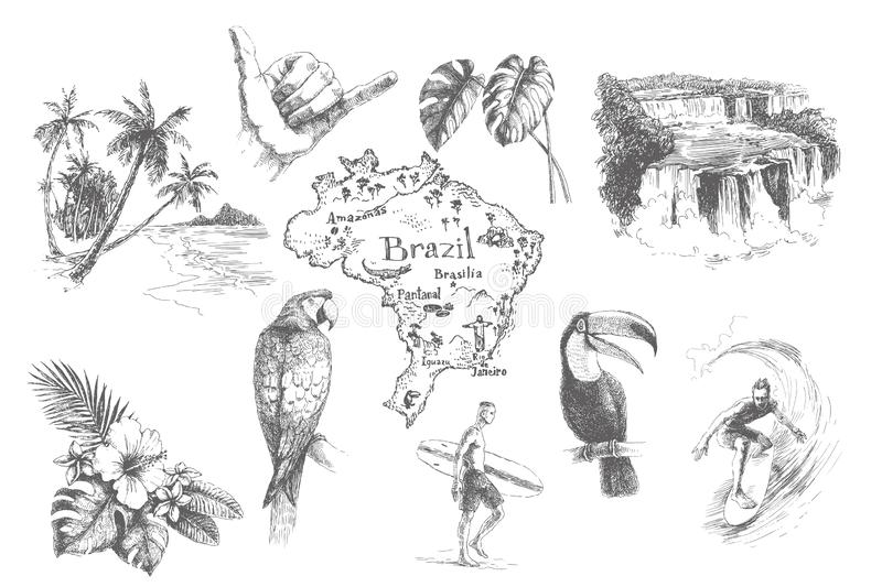 Vector vintage set illustrations of symbols tropical summer vacation. Hand drawn sketch of beach, surfer, toucan, parrot, sign royalty free illustration