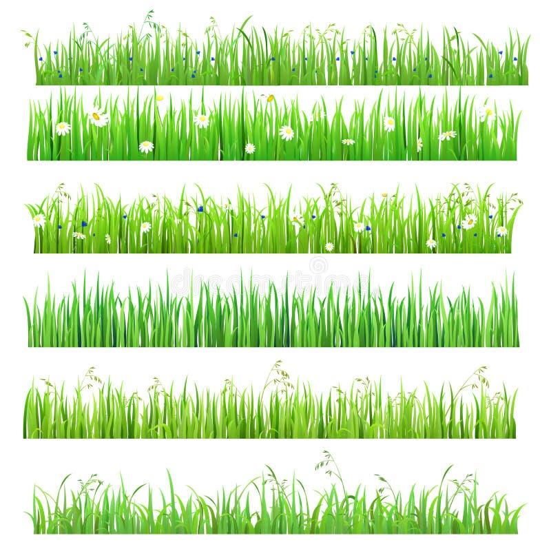 Vector vlak geïsoleerde naadloze graslijnen met bloem, vlinder royalty-vrije illustratie