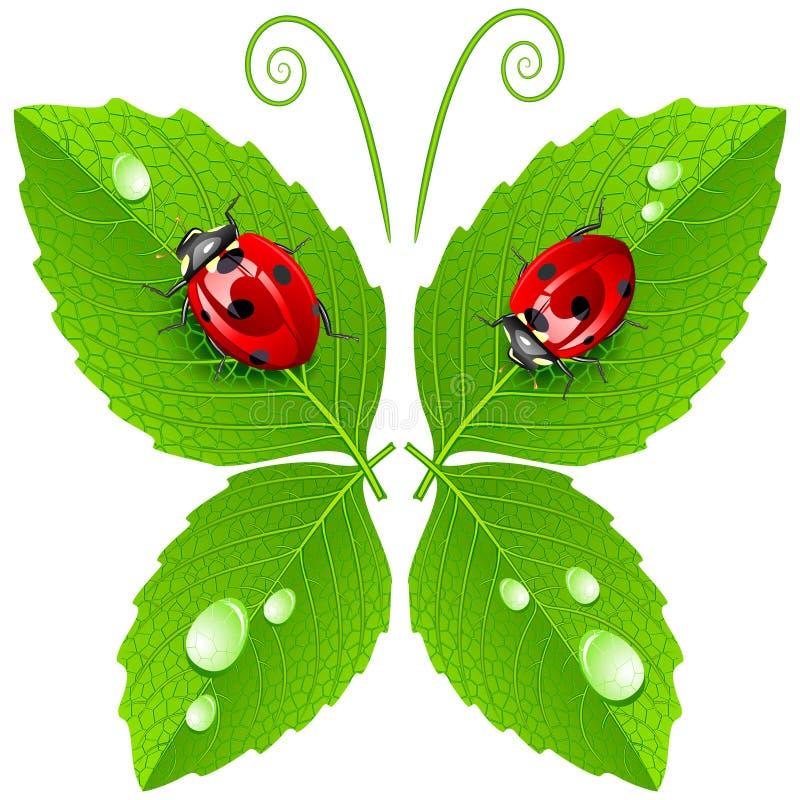 Vector vlinder vector illustratie