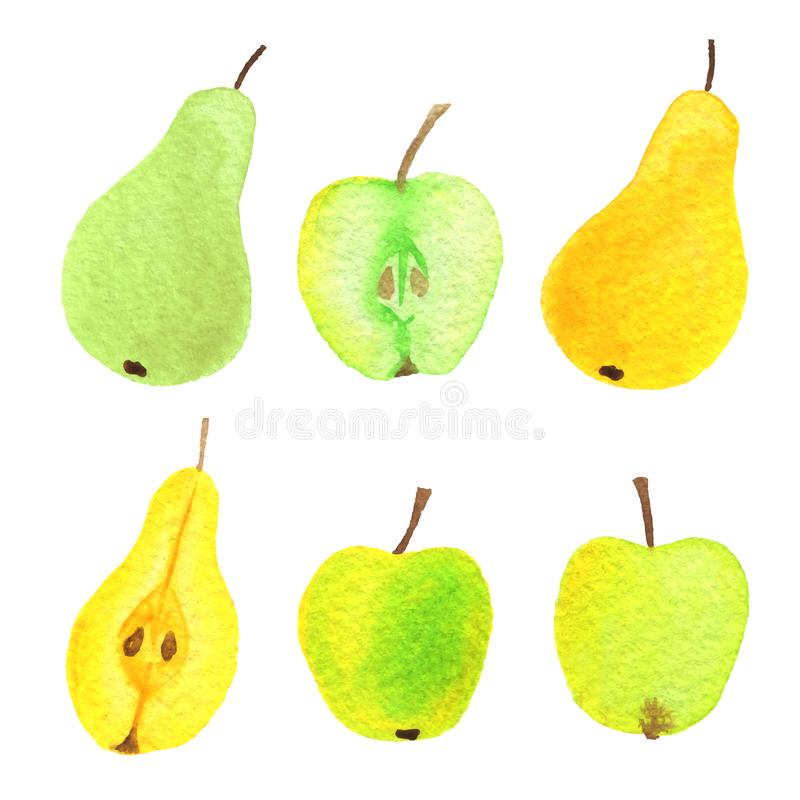 Free Vector Watercolor Apples, Pears, Half An Apple And Half And Pear Royalty Free Stock Images - 110446809