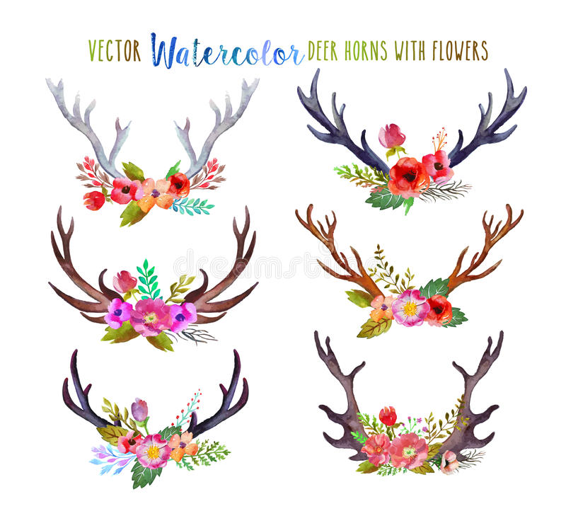 Vector watercolor deer horns vector illustration