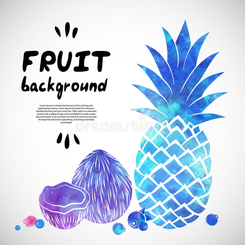 Vector Watercolor fruit illustration. For your business vector illustration