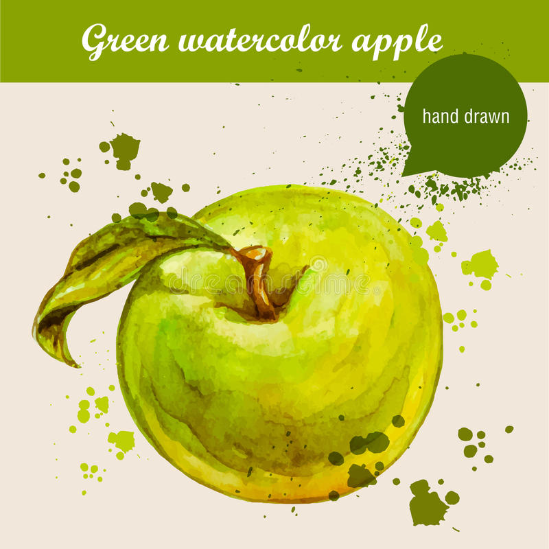 Vector watercolor hand drawn green apple with leaf and watercolor drops. Organic food illustration stock illustration