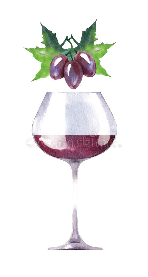Vector watercolor sketch of wine and grapes. vector illustration