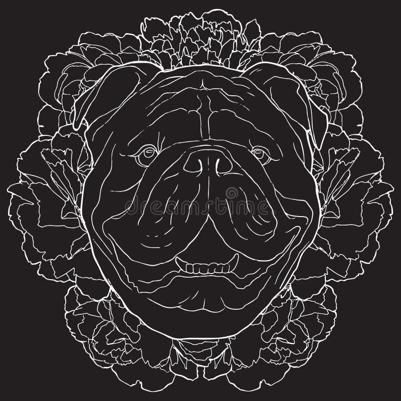 Vector weiße Konturnskizze der Bulldogge und der Blumen auf schwarzem Hintergrund stock abbildung