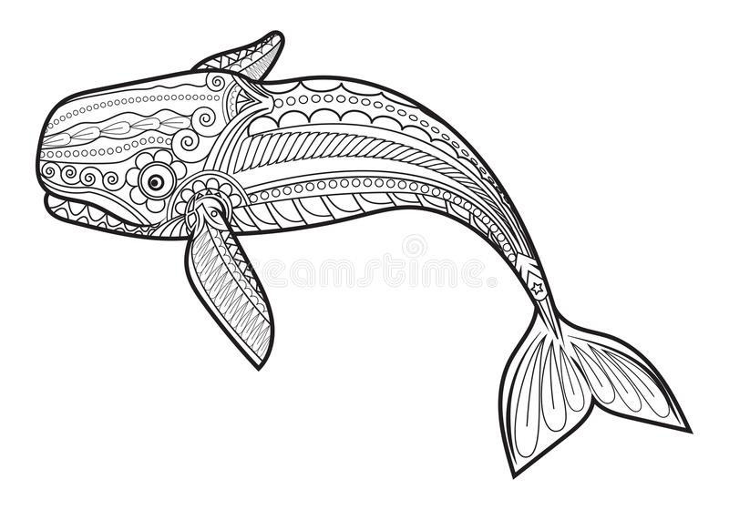 Vector Whale for adult anti stress coloring pages. Ornamental tribal patterned illustration for tattoo, poster or print. Hand drawn monochrome sketch. Sea vector illustration