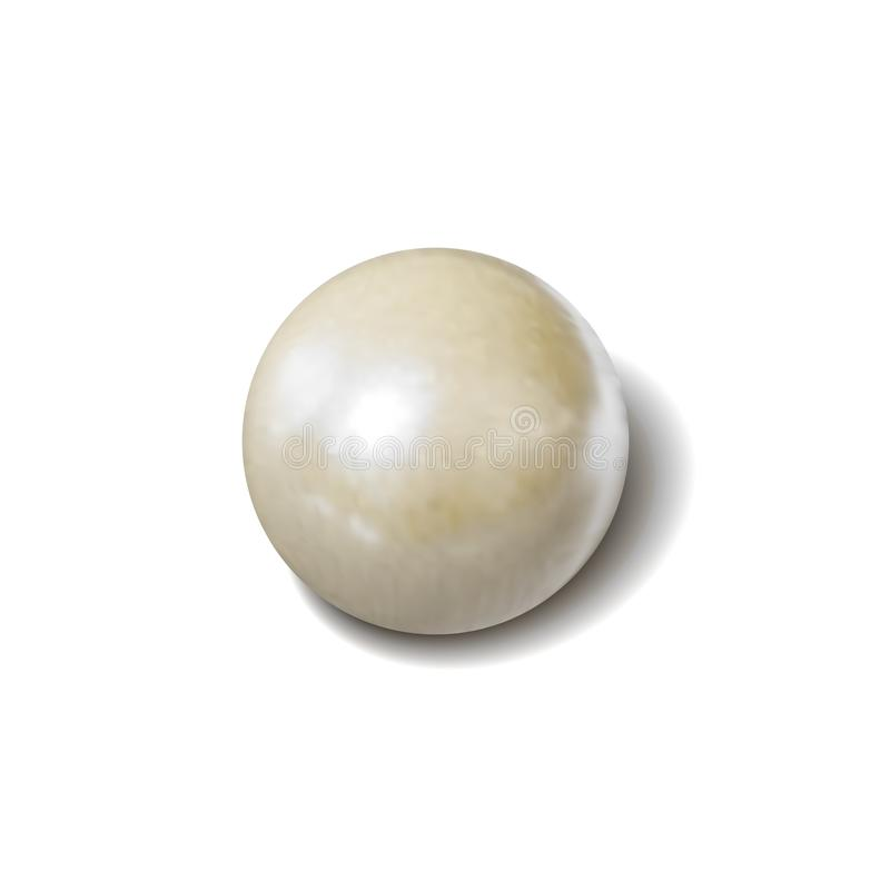 Vector White Pearl, Photo Realistic Illustration, Object with Shadow Isolated. royalty free stock photography