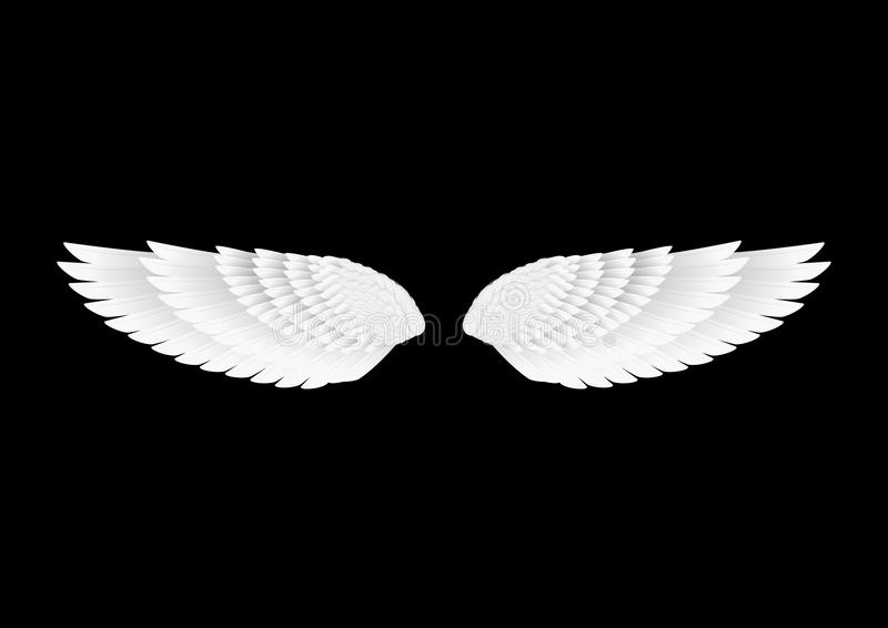 The vector white wings stock photo