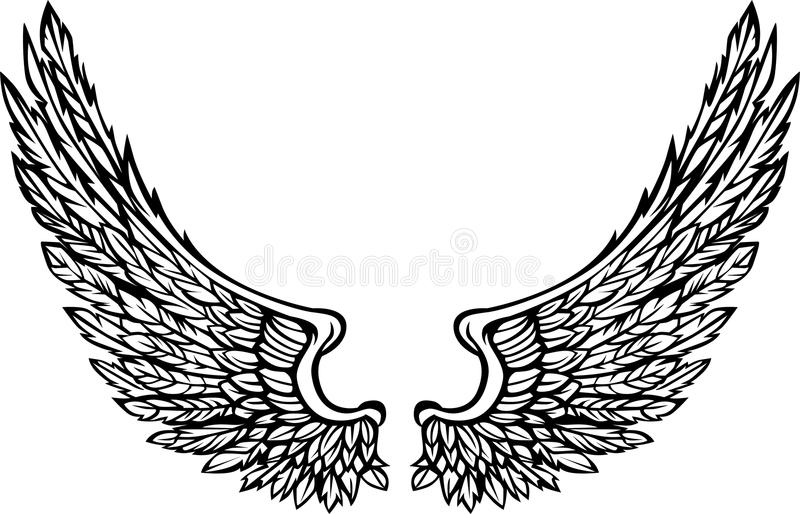 vector wings eagle graphic image stock vector illustration of rh dreamstime com vector winds vector winds 930 mb