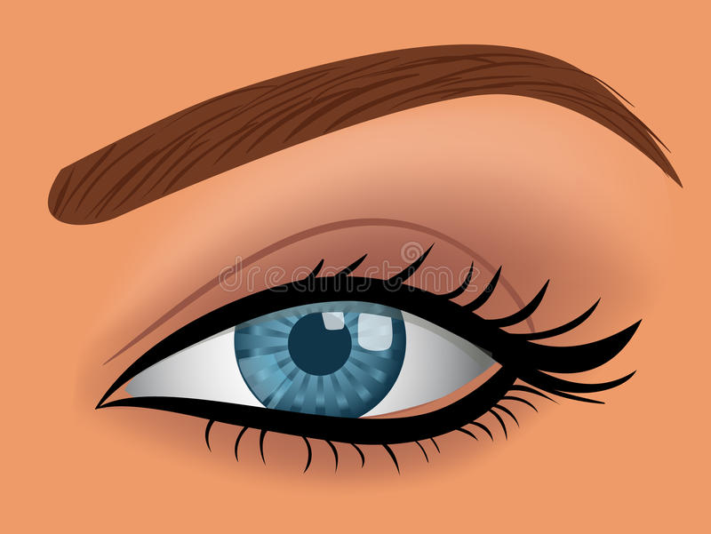 Vector woman blue eye vector illustration