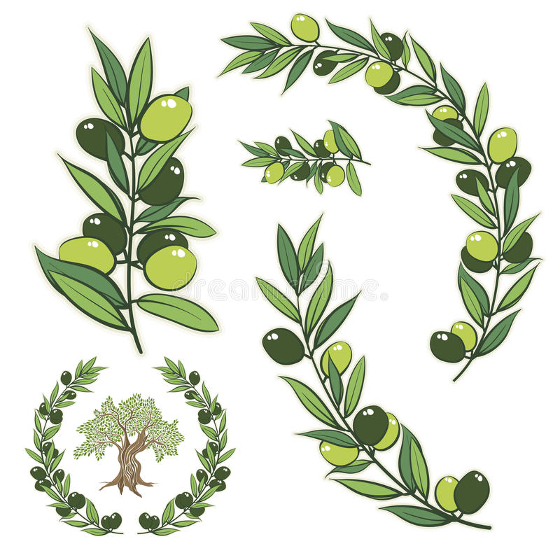 Vector wreath with olive branch and olive tree. stock illustration