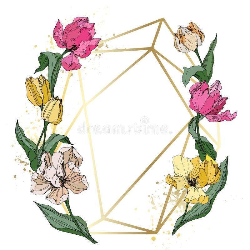 Vector Tulip engraved ink art. Floral botanical flower. Spring leaf wildflower isolated. Frame border ornament square. stock illustration