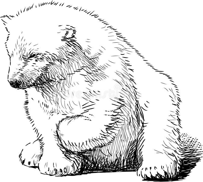 Sitzender Eisbär stock abbildung