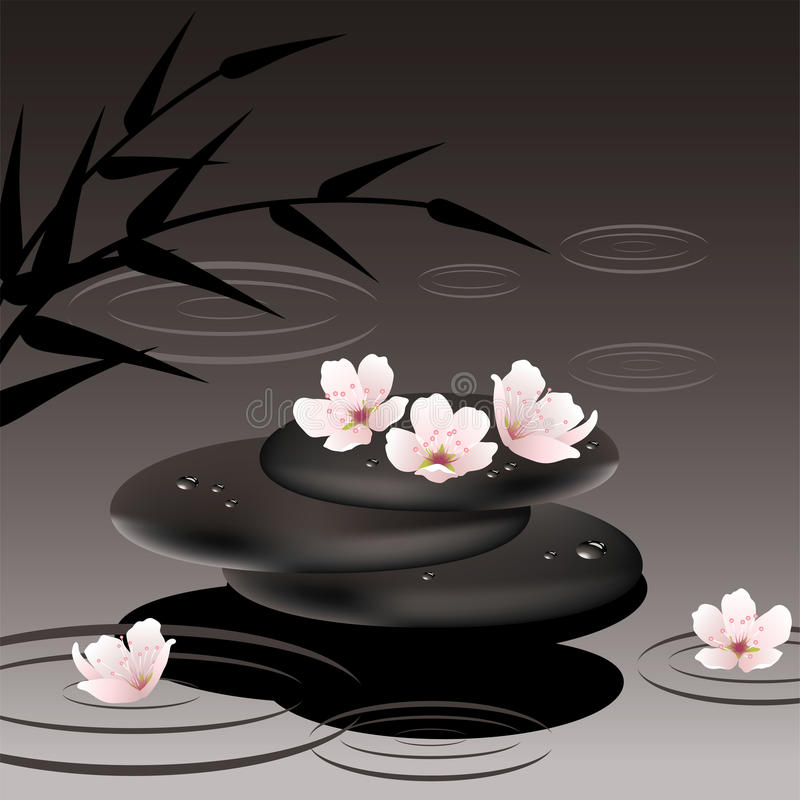 vector zen stones and cherry flowers royalty free illustration