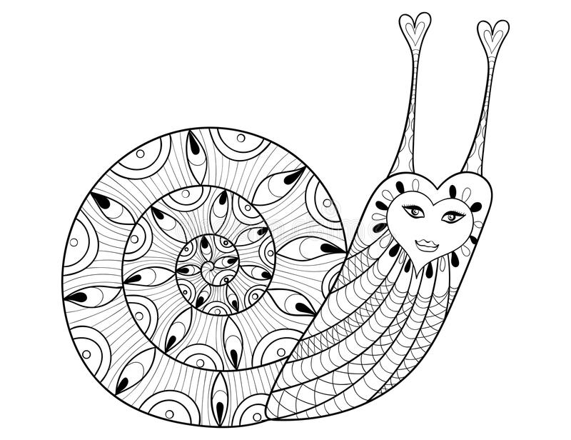Vector Zentangle Snail For Adult Coloring Pages, Art