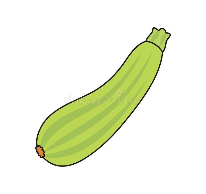 Vector zucchini stock photos