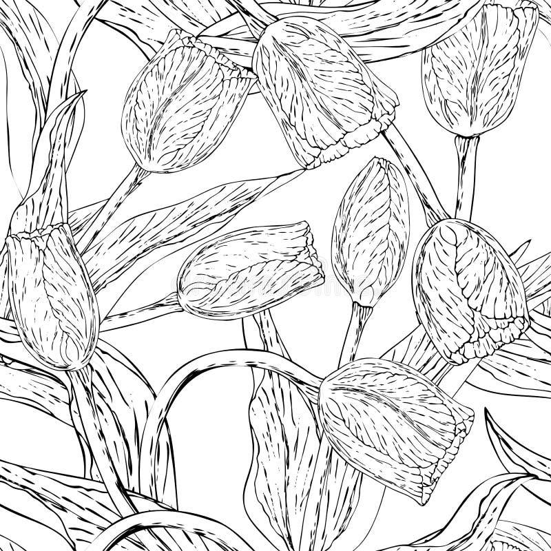 Vector zwart-wit bloemen naadloze patroonwhit tulp vector illustratie