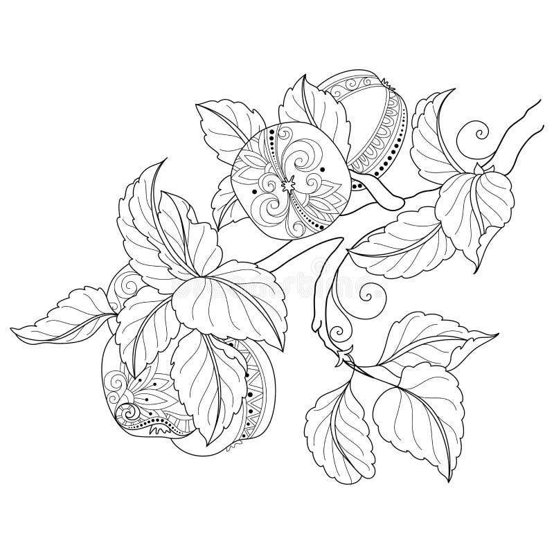 Vector Zwart-wit Fruitachtergrond stock illustratie