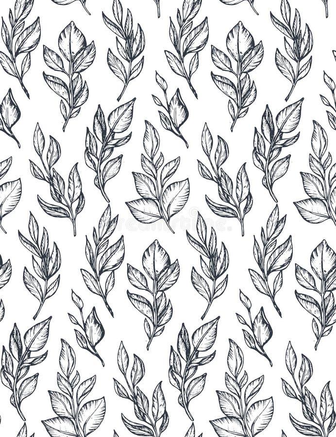 Vector zwart-wit naadloos patroon met hand getrokken takken en bladeren vector illustratie