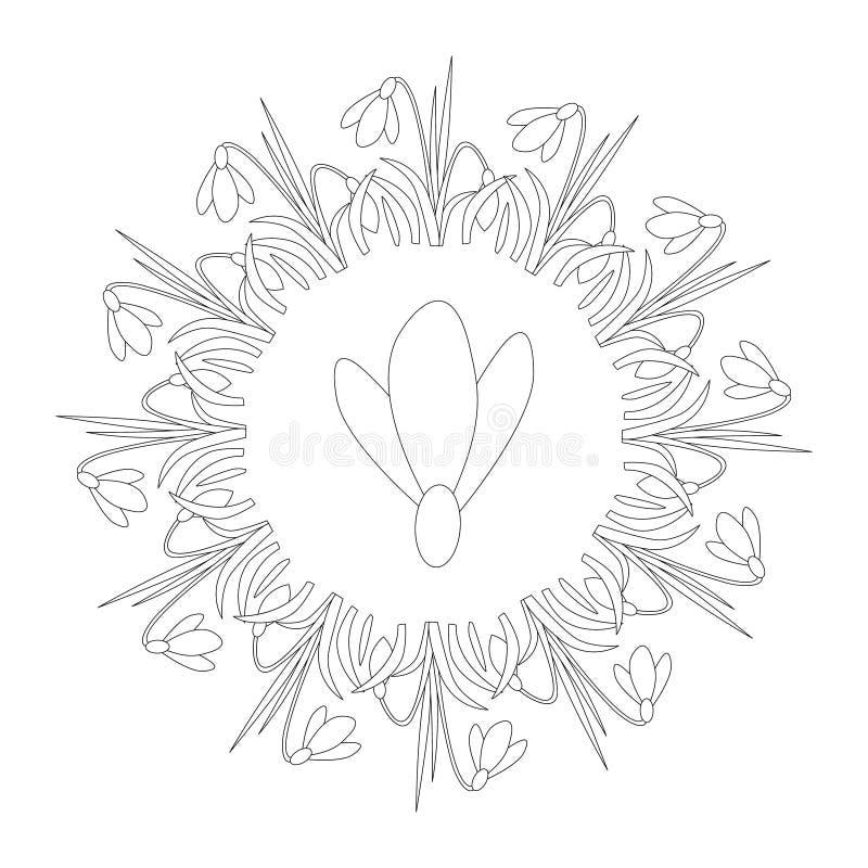 Vector zwart-witte ronde de lentemandala met bloemsneeuwklokje - volwassen kleurende boekpagina stock illustratie