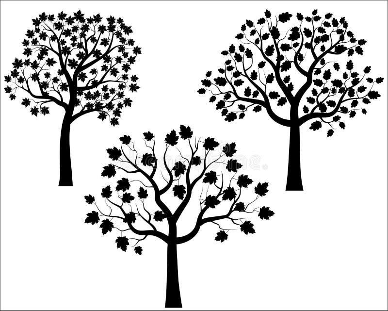 Vector zwarte boomsilhouetten vector illustratie
