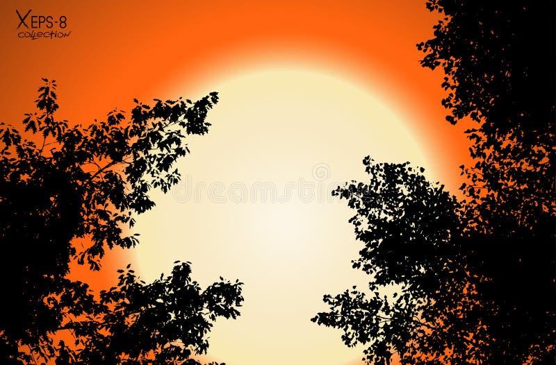Vector zwarte contour van boombladeren op oranje zonsondergangachtergrond vector illustratie