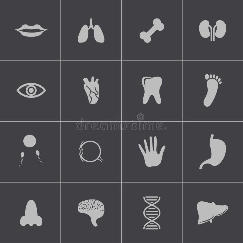 Vector zwarte geplaatste anatomiepictogrammen royalty-vrije illustratie