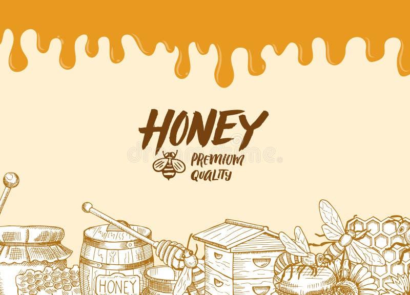 Vectorachtergrond met geschetste honingselementen, druipende honing royalty-vrije illustratie
