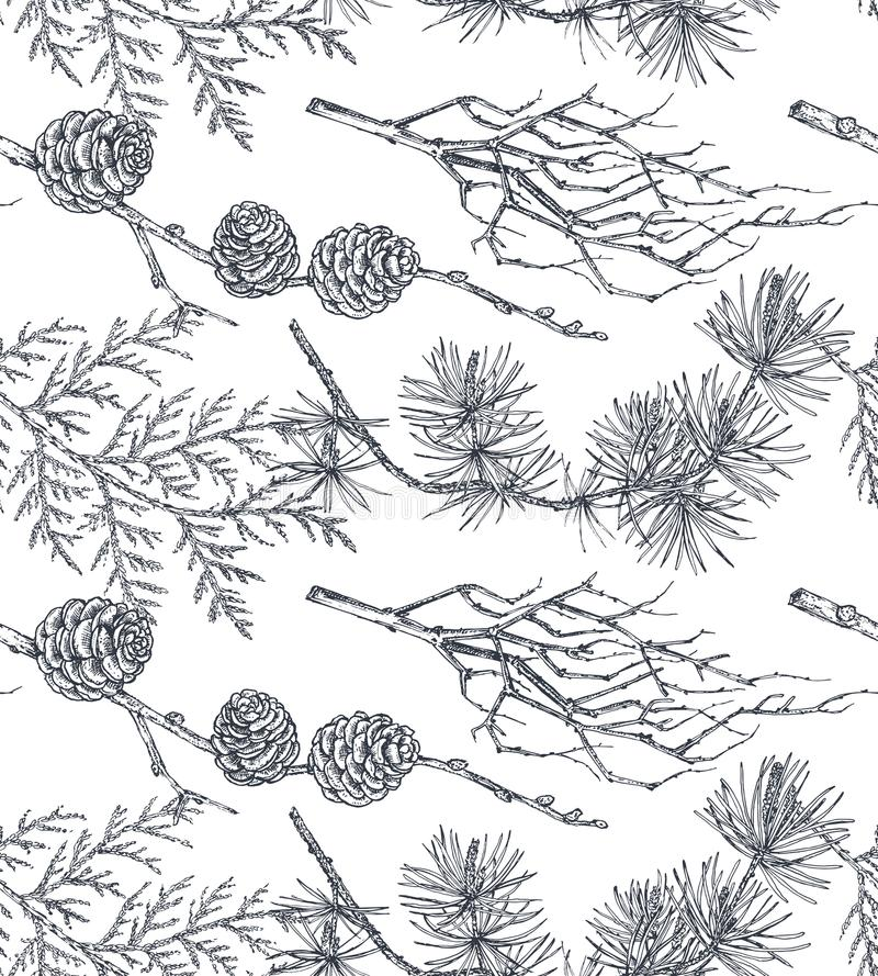 Vectorachtergrond met hand getrokken naaldbomenbomen in schetsstijl stock illustratie
