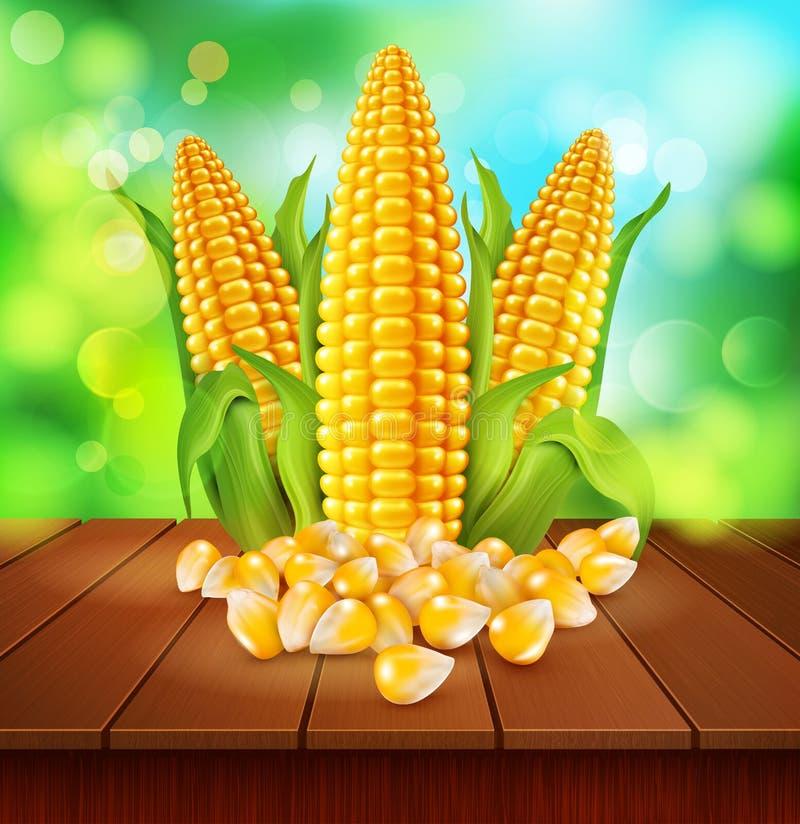 Vectorachtergrond met korrels en maïskolven van graan op een houten tabl vector illustratie