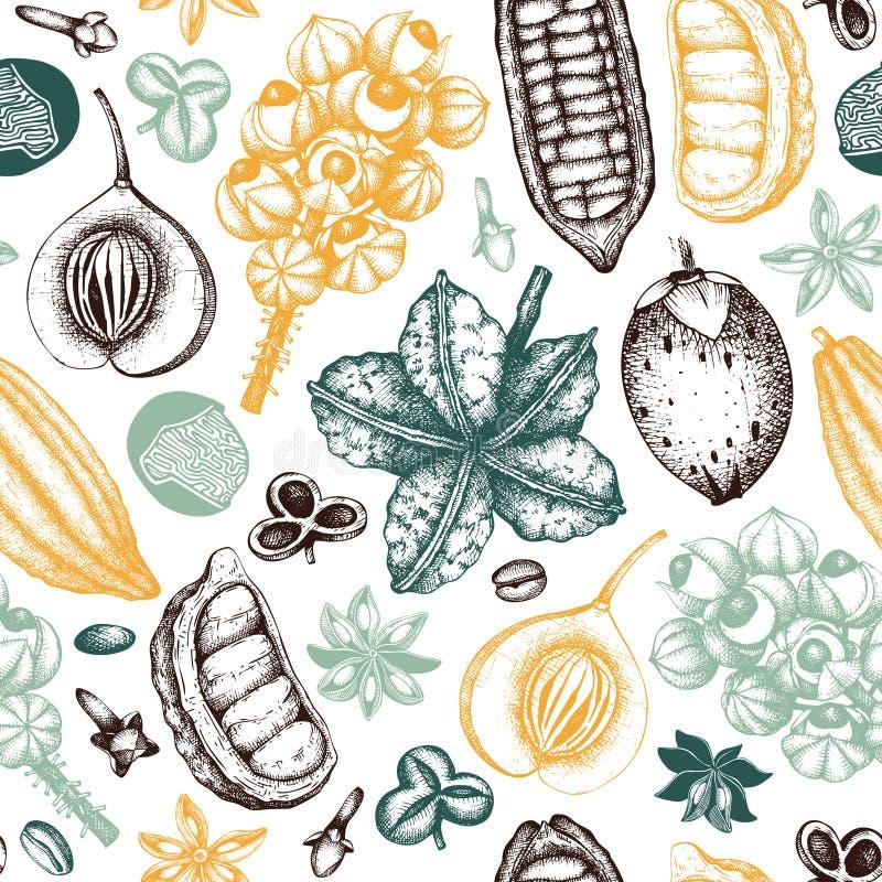 Vectorachtergrond met tonische en kruidige installaties Hand getrokken naadloos patroon met kruidenillustraties Uitstekende aroma vector illustratie